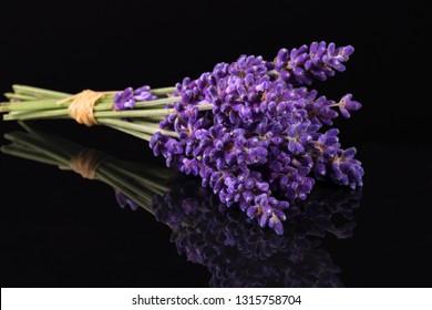 Bouguet of violet lavendula flowers isolated on black background, close up.