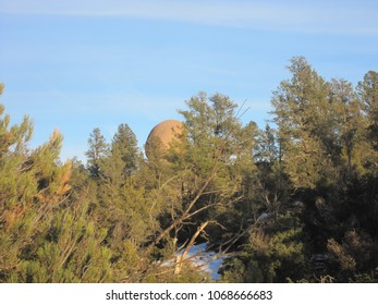 Boulder among the trees