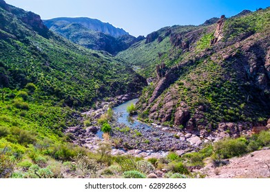 Boulder Canyon Trail Superstition Wilderness, Arizona. This remote trail is beautiful, remote, and very challenging, hiking through brush in the water and at the shoreline, most of the day.