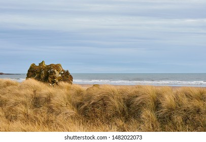 A boulder from the Cliffs behind it, has come to settle on the Grass Dunes overlooking St Cyrus Beach, which is a Nature reserve in Aberdeenshire, Scotland.