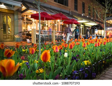 BOULDER, COLORADO - APRIL 27, 2018:  Night scene along popular Pearl Street Mall with people, tulips and lights in downtown Boulder Colorado