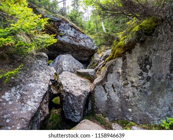 Boulder filled ravine, a rock scramble section of the Appalachian Trail in Maine, in Mahoosuc Notch.