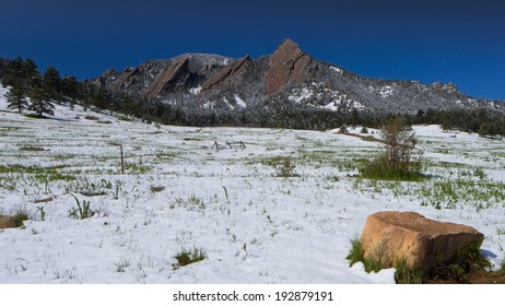 Boulder Flatirons Mountains with Light Spring Snow in Valley Foreground and Vivid Rocky Mountain Blue Sky