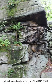Boulder rocks in the forest NY summer