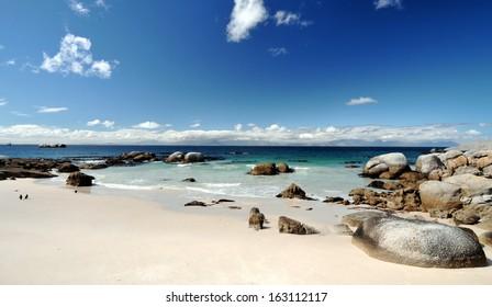 Boulders Beach Nature Reserve, near Cape Town, Western Cape, South Africa.