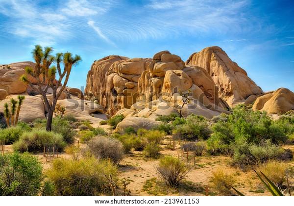 Boulders et Joshua Trees dans le Joshua Tree National Park, Californie.