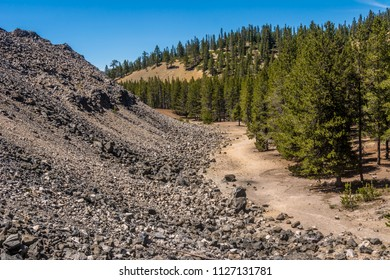 Boundary between forest and the Big Obsidian Flow, a lava flow 1300 years ago in the Newberry Volcano Caldera, Newberry National Volcanic Monument, near Bend, Oregon.