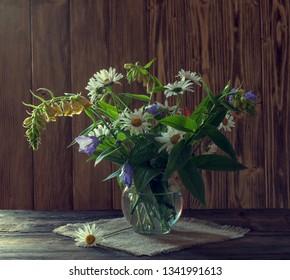 bouquet of beautiful garden daisy flowers