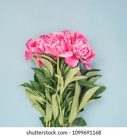 Bouquet of beautiful pink peony flowers on blue background. Image for social media, top view.