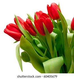 bouquet of  beautiful red tulips