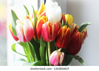 Bouquet of beautiful tulips, Valentine's , International Women's , Mother's day