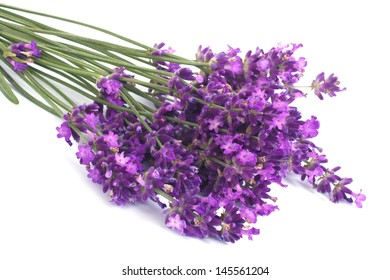 Bouquet of blue lavender flowers isolated on white background
