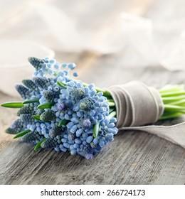 Bouquet of blue muscari flowers