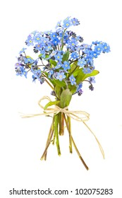 Bouquet of blue wild forget-me-not flowers tied with bow isolated on white