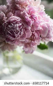 Bouquet of blurred pink peonies. Vibrant flowers. Selective focus.