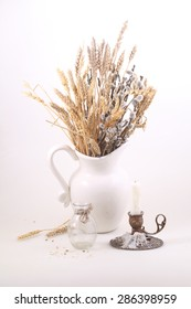 Bouquet from branches of a willow and cones in a white jug on a white background