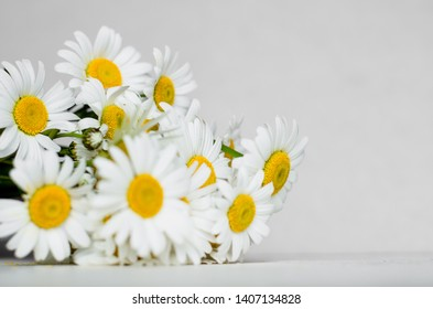 Bouquet of chamomiles on a white background. horizontal image