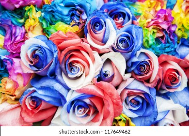bouquet of color roses