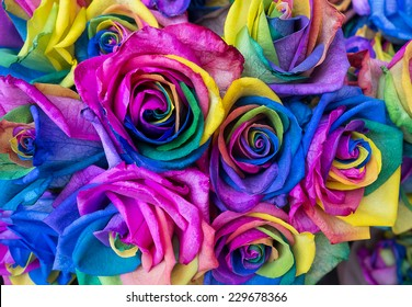 bouquet of colored roses, rainbow roses with multicoloured petals