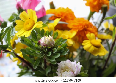 Bouquet of colorful autumn flowers.