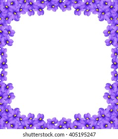 Bouquet of colorful flowers of violets. delicate flowers isolated on white background
