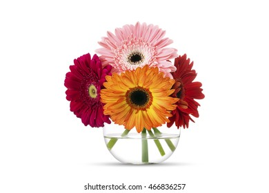 Bouquet colorful gerber flowers in round glass vase, isolated on white
