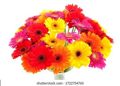 Bouquet of colorful Gerbera flowers over white background