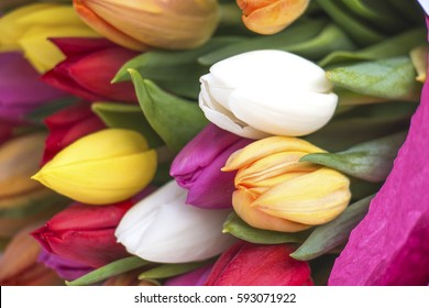 Bouquet of colorful tulips in pink paper on white wooden background. Bunch of assorted flowers. Spring time