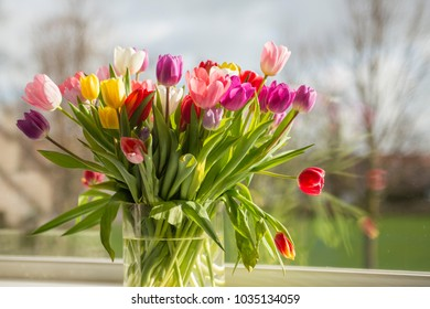 Bouquet of colorful tulips in a vase in the sun