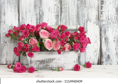 Bouquet of crimson and pink spray roses in wood box on white wooden table against shabby wall.