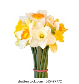 a bouquet of daffodils isolated on white background