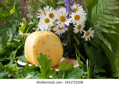 bouquet of daisies and cheese with cumin for the holiday Ligo of Latvia