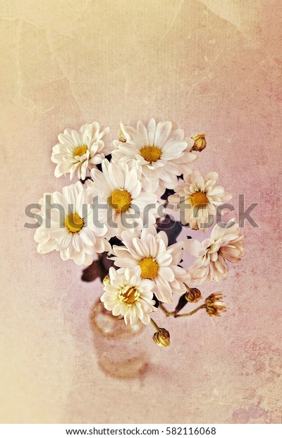 bouquet daisies (Chrysanthemum white) on light brown background. aged toned background, old paper texture. soft focus, grunge texture