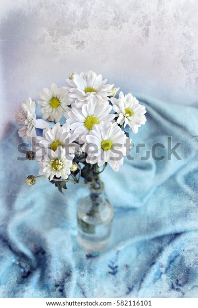 bouquet daisies (Chrysanthemum white) on blue fabric background. aged toned background, old paper texture. soft focus, grunge texture