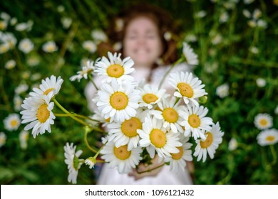 A bouquet of daisies in the hands of a girl. The concept of happiness, harmony and health