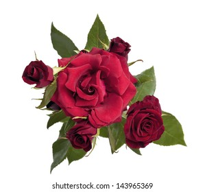 Bouquet of dark red roses on a white background