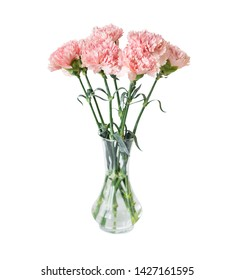 Bouquet of delicate pink flowers of carnations in an elegant transparent glass vase, isolated on white background
