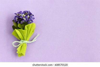 Bouquet of delicate viola flowers
