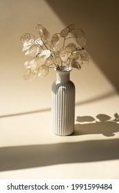 Bouquet of dried lunaria in ceramic vase on beige studio background