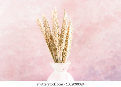 Bouquet of dry wheat spikelets in vase on a watercolor pink pastel background