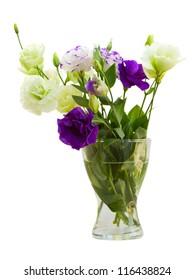 Bouquet of eustoma flowers  isolated on white background