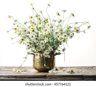 Bouquet of field chamomiles in the vase on the wooden table. White background.