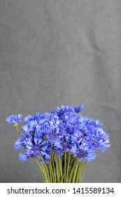 Bouquet field cornflowers. On a gray background. Cornflower or Blue (Centaurea cyanus), with spider-woolly linear-lanceolate leaves and blue flowers.