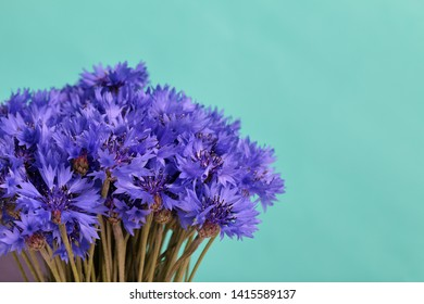 Bouquet field cornflowers. On a light green background. Cornflower or Blue (Centaurea cyanus), with spider-woolly linear-lanceolate leaves and blue flowers.