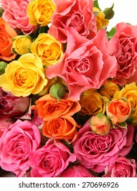 Bouquet of fine roses