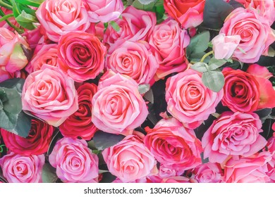 Bouquet of flowers: fresh red and pink roses for backgrounds