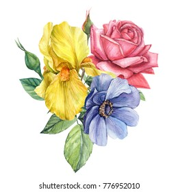 bouquet of flowers, yellow iris, rose, anemones, watercolor botanical illustration, hand drawing