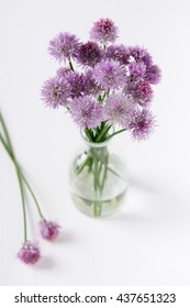 Bouquet of fresh chives flower from the garden in glass vase. Selective focus.