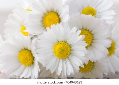 Bouquet of fresh daisies as natural background