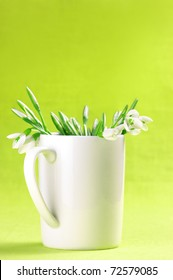 Bouquet of fresh snowdrops in white mug on yellow background.